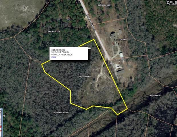 95 Mill Creek Trace, Elgin, SC 29045 (MLS #486412) :: EXIT Real Estate Consultants