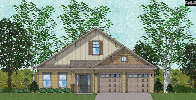 715 Long Iron Lane, Blythewood, SC 29016 (MLS #486424) :: EXIT Real Estate Consultants