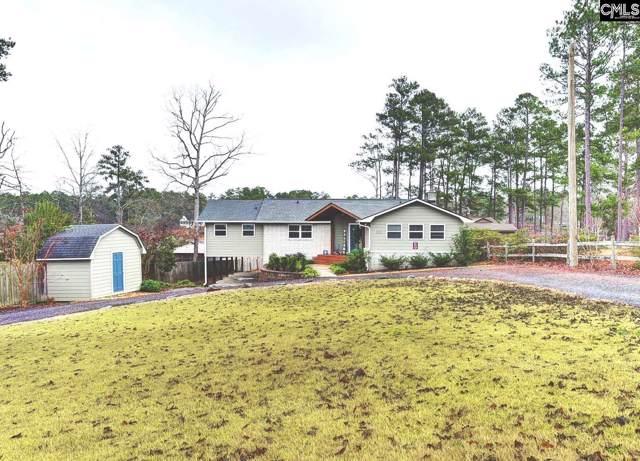 512 N Lakeshore Drive, Gilbert, SC 29054 (MLS #486489) :: EXIT Real Estate Consultants