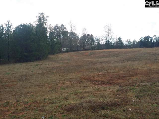 0 Sc Highway 219/Main Street, Newberry, SC 29108 (MLS #486491) :: EXIT Real Estate Consultants
