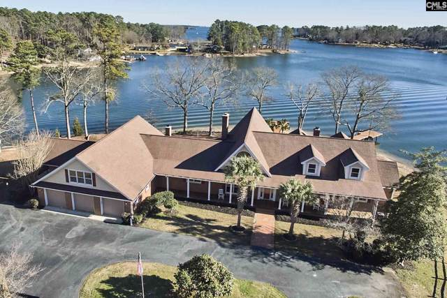 449 Dallas Pointe Lane, Chapin, SC 29036 (MLS #486544) :: NextHome Specialists