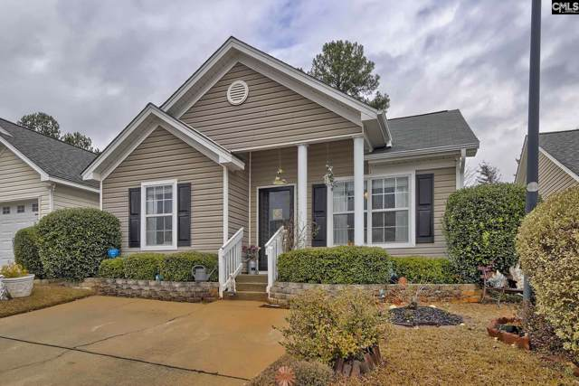 111 Merowey Court, Chapin, SC 29036 (MLS #486605) :: EXIT Real Estate Consultants