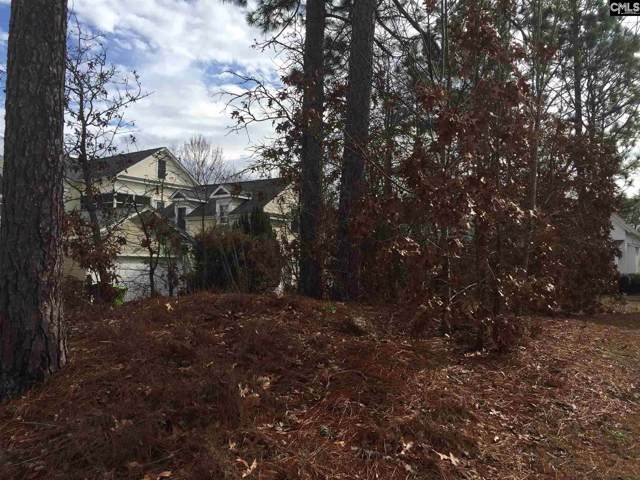 633 Long Pointe Lane, Columbia, SC 29078 (MLS #486617) :: Resource Realty Group