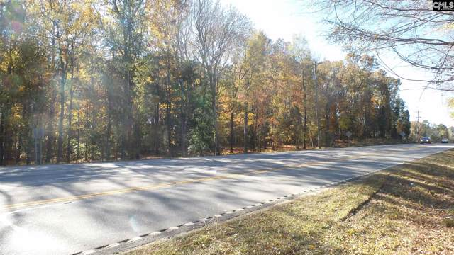 Hwy 76, Chapin, SC 29036 (MLS #486653) :: Home Advantage Realty, LLC