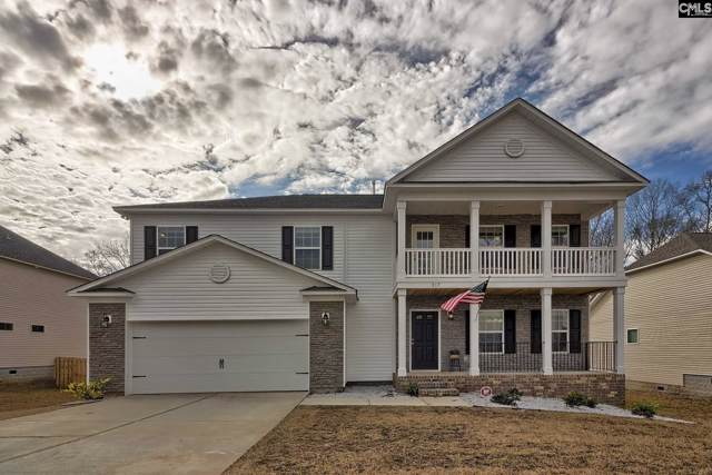 317 Saucer Way, Chapin, SC 29036 (MLS #486676) :: EXIT Real Estate Consultants