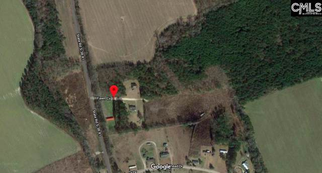 Fawn Circle, Elloree, SC 29047 (MLS #486682) :: Home Advantage Realty, LLC