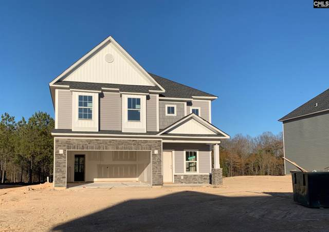 145 Drummond Way, Lexington, SC 29072 (MLS #486684) :: Home Advantage Realty, LLC