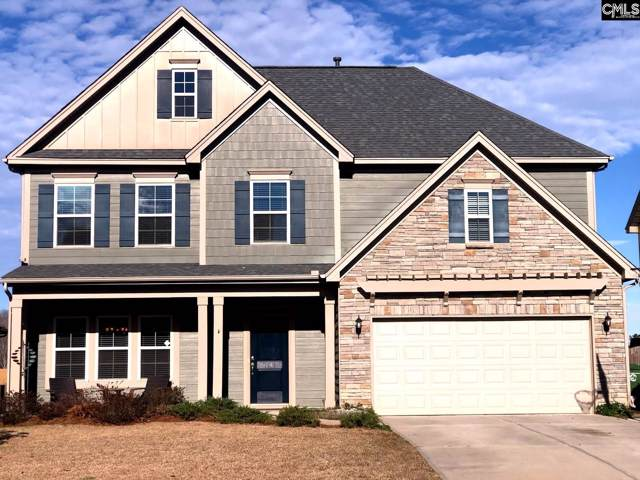 1141 Portrait Hill Drive, Chapin, SC 29036 (MLS #486747) :: EXIT Real Estate Consultants