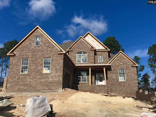 895 Royal Oak Way, Elgin, SC 29045 (MLS #486788) :: NextHome Specialists