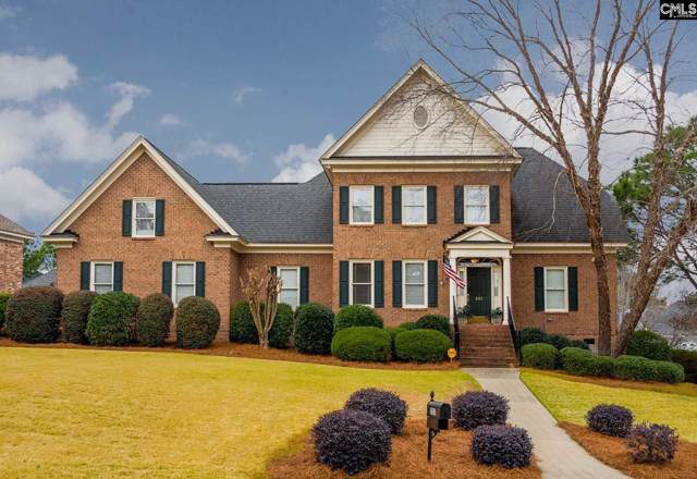 203 Turkey Point Circle, Columbia, SC 29223 (MLS #486901) :: NextHome Specialists
