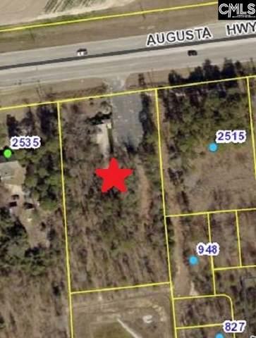 2525 Augusta Highway, Lexington, SC 29072 (MLS #487018) :: The Latimore Group