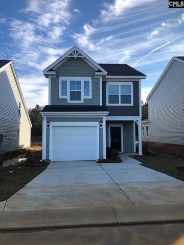 1163 Bergenfield Lane, Chapin, SC 29036 (MLS #487033) :: The Latimore Group