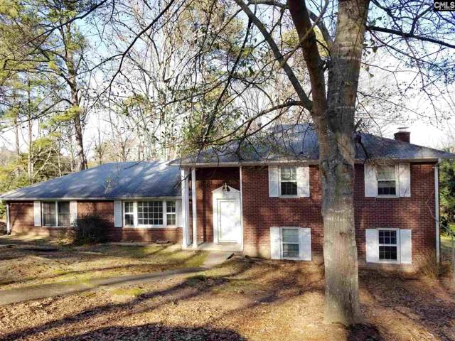 50 Nob Hill Road, Columbia, SC 29210 (MLS #487055) :: Home Advantage Realty, LLC