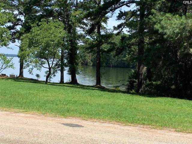 Lakeview Drive, Jenkinsville, SC 29065 (MLS #487088) :: The Olivia Cooley Group at Keller Williams Realty