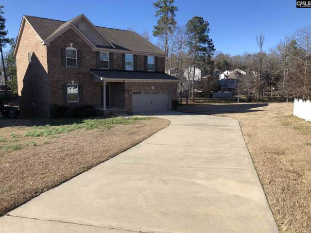 116 Palm Street, Chapin, SC 29036 (MLS #487094) :: Home Advantage Realty, LLC