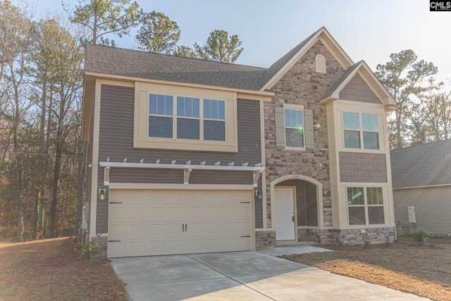 233 Elsoma Drive, Chapin, SC 29036 (MLS #487219) :: Home Advantage Realty, LLC