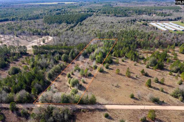 220 Jewelweed Road, Salley, SC 29137 (MLS #487221) :: NextHome Specialists