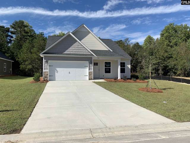 110 Drummond Way, Lexington, SC 29072 (MLS #487264) :: NextHome Specialists