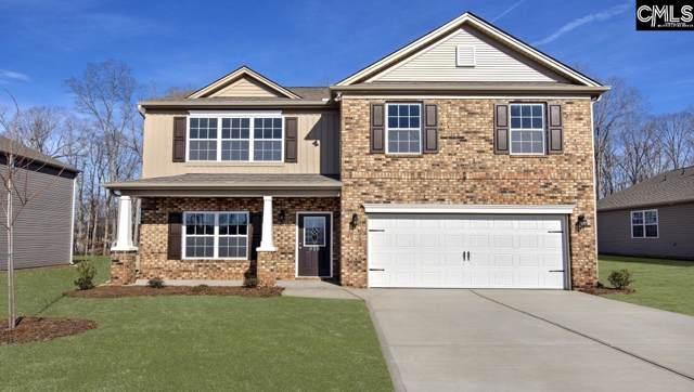 316 Sandy Shoals Court, Lexington, SC 29072 (MLS #487394) :: EXIT Real Estate Consultants