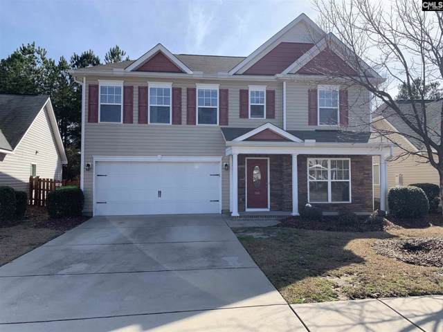 166 Ashewicke Drive, Columbia, SC 29229 (MLS #487433) :: EXIT Real Estate Consultants