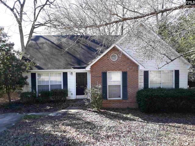 125 Caddis Creek Road, Irmo, SC 29063 (MLS #487465) :: EXIT Real Estate Consultants