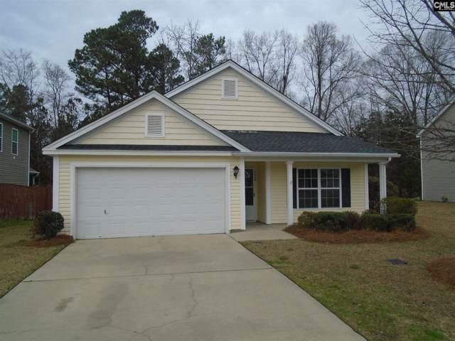 152 Pacific Avenue, Chapin, SC 29036 (MLS #487504) :: EXIT Real Estate Consultants
