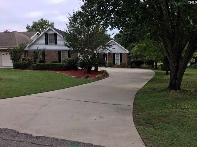 100 Saluda Drive, Santee, SC 29142 (MLS #487564) :: EXIT Real Estate Consultants