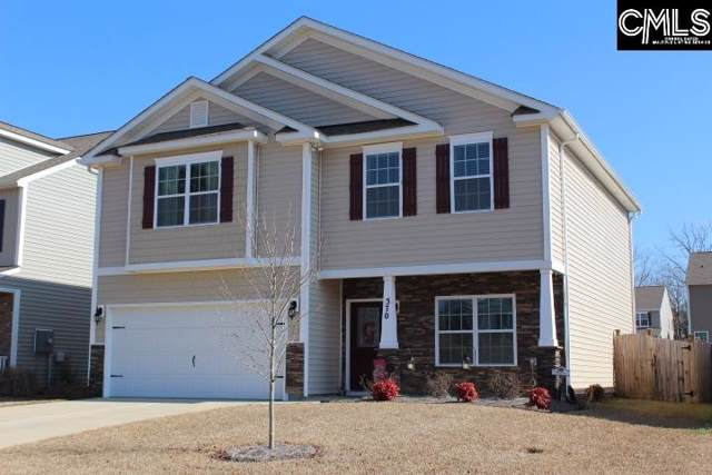 370 Explorer Drive, Chapin, SC 29036 (MLS #487742) :: Resource Realty Group
