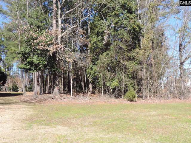 110 Pointe Overlook Drive #23, Chapin, SC 29036 (MLS #487803) :: EXIT Real Estate Consultants
