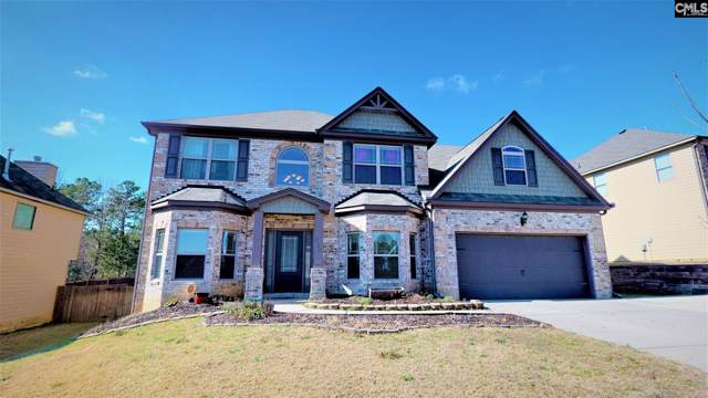 225 View Drive, Blythewood, SC 29016 (MLS #487833) :: EXIT Real Estate Consultants