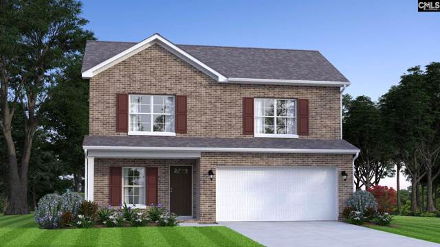 183 Marissa Lane, Lexington, SC 29072 (MLS #487838) :: NextHome Specialists