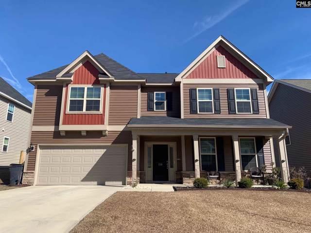 226 Avensong Drive, Lexington, SC 29072 (MLS #487882) :: Loveless & Yarborough Real Estate