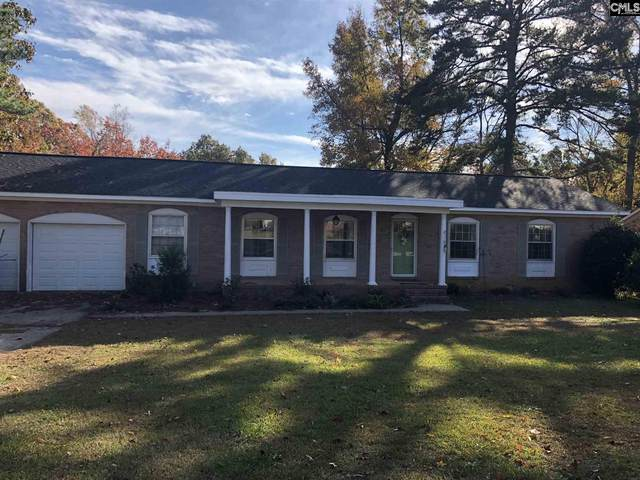 507 Zanark Drive, Columbia, SC 29212 (MLS #487898) :: EXIT Real Estate Consultants