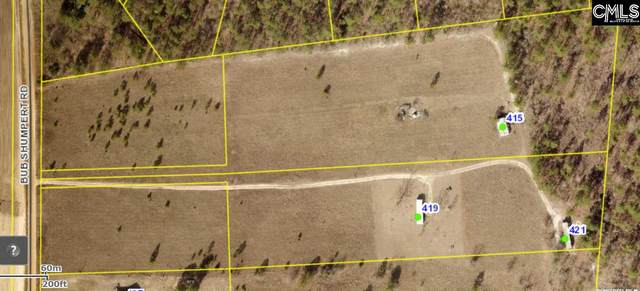 419 Bub Shumpert Road, Pelion, SC 29123 (MLS #487961) :: Home Advantage Realty, LLC