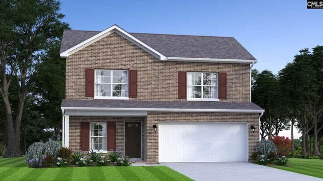 187 Marissa Lane, Lexington, SC 29072 (MLS #487980) :: NextHome Specialists
