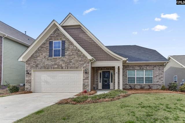 1131 Portrait Hill Drive, Chapin, SC 29036 (MLS #488018) :: The Meade Team