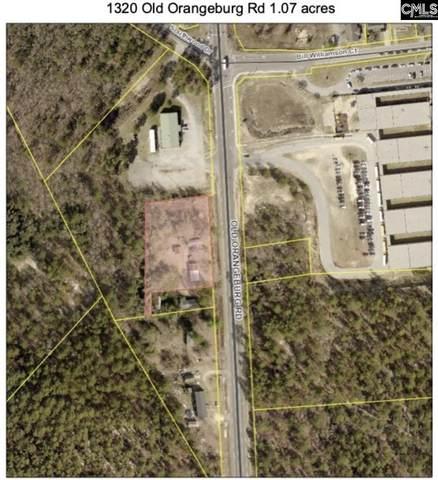 1320 Old Orangburg Road, Lexington, SC 29073 (MLS #488068) :: Home Advantage Realty, LLC