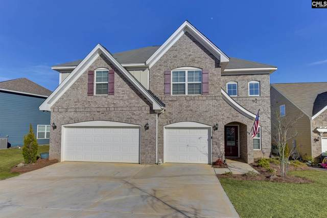 1218 Portrait Hill Dr, Chapin, SC 29036 (MLS #488114) :: EXIT Real Estate Consultants