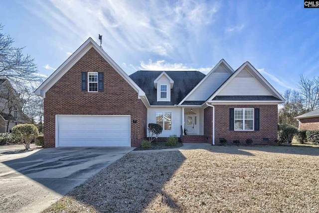 217 White Plains Court, Gilbert, SC 29054 (MLS #488126) :: EXIT Real Estate Consultants