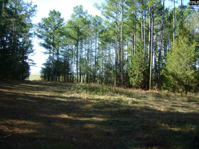 Lot D-1, Lot F State Hwy 215, Jenkinsville, SC 29065 (MLS #488227) :: EXIT Real Estate Consultants