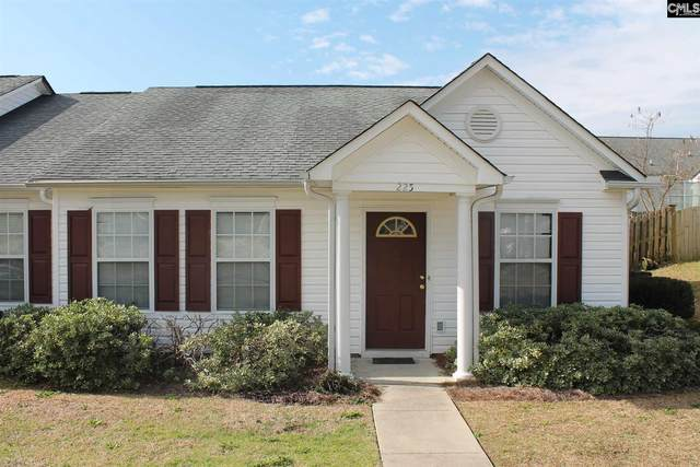 225 Windsor Village Drive, Columbia, SC 29223 (MLS #488239) :: The Meade Team