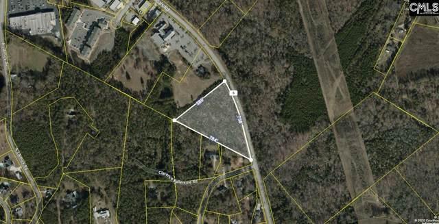 002 Dreher Shoals Road, Irmo, SC 29063 (MLS #488377) :: Loveless & Yarborough Real Estate