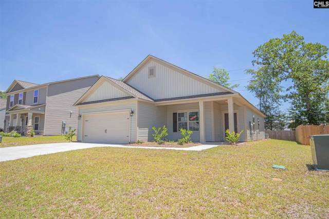 127 Elsoma Drive, Chapin, SC 29036 (MLS #488408) :: NextHome Specialists