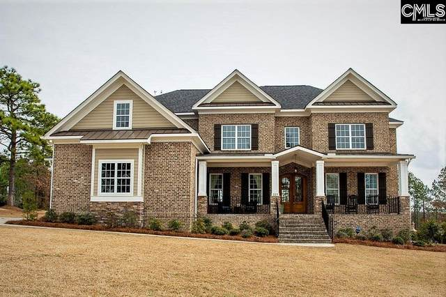 223 Yellow Jasmine Drive, Elgin, SC 29045 (MLS #488414) :: The Latimore Group