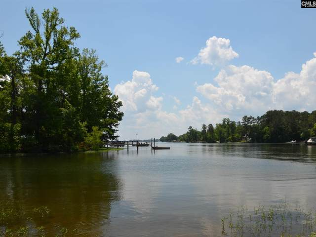 648 Willowood Parkway, Chapin, SC 29036 (MLS #488474) :: The Latimore Group