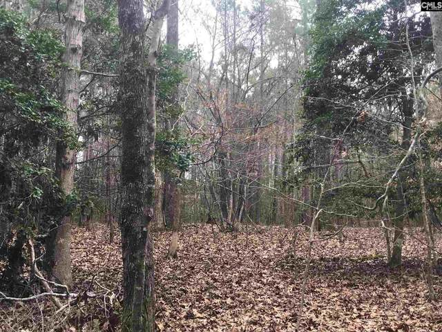 1764 Wash Lever Road #10, Little Mountain, SC 29075 (MLS #488508) :: EXIT Real Estate Consultants