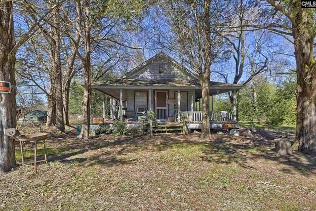 186 Zenker Road, Lexington, SC 29072 (MLS #488734) :: Home Advantage Realty, LLC