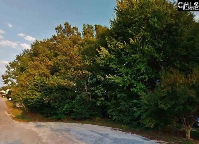 216 Cornish Way, Lexington, SC 29073 (MLS #488735) :: Resource Realty Group