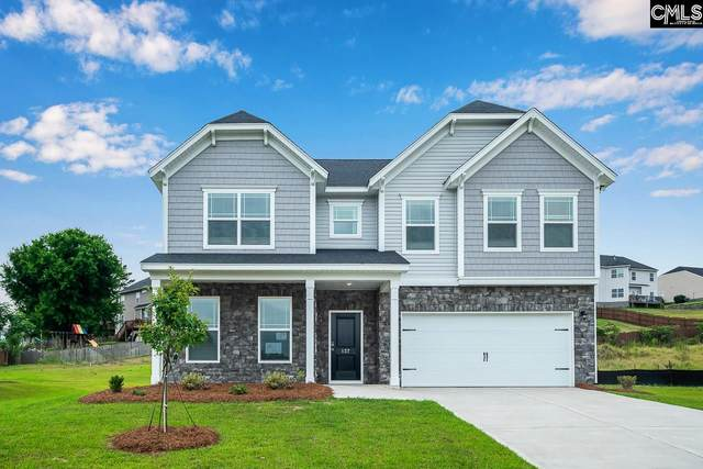 227 Sunny View Lane, Lexington, SC 29073 (MLS #488792) :: The Olivia Cooley Group at Keller Williams Realty
