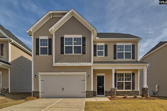 161 Sunny View Lane, Lexington, SC 29073 (MLS #488796) :: The Olivia Cooley Group at Keller Williams Realty